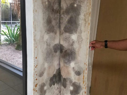 Melbourne City Councilman Paul Alfrey took this photo of mold behind wallpaper during a January 2017 tour of the police department headquarters.
