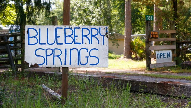 Blueberry Springs, opened in 1989 in Jefferson County, hosts it's annual harvest during May and June. Locals can go to the farm and pick their own blueberries or purchase a wide variety of berry products such as jam and wine.
