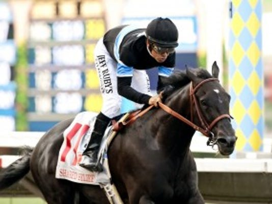 Shared Belief romped in Del Mar's $1 million Pacific Classic and will try to beat older horses again in Santa Anita's Awesome Again. Benoit Photo
