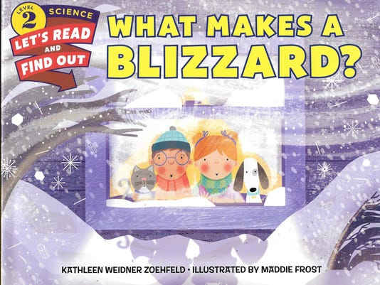 What Makes a Blizzard