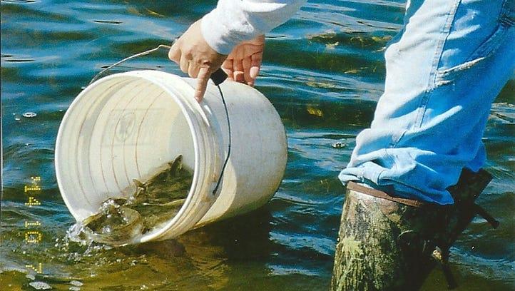 Replay: Experts discuss Wisconsin walleye fishing