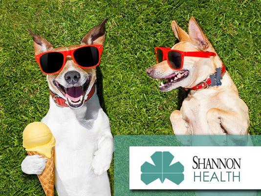 shannon-health_hot-dogs_900x675.jpg
