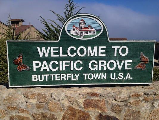Butterfly town.jpg
