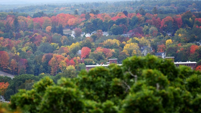 Another view of foliage from the top of Garrison Hill Tower in Dover.
