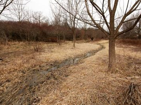 A property in the county shows a successful stream restoration that was implemented back in 1998.