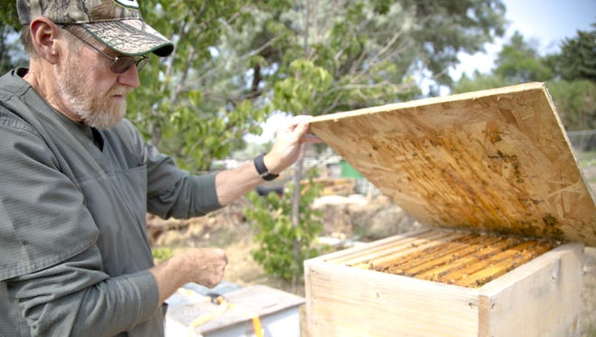 John Nelson opens one of the beehives located at West Side Orchard Garden on Monday. Nelson has volunteered at the Garden for two years and continues tending to the bees and the garden.