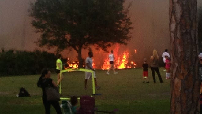 A fire at Three Oaks Community Park burned brush and trees.