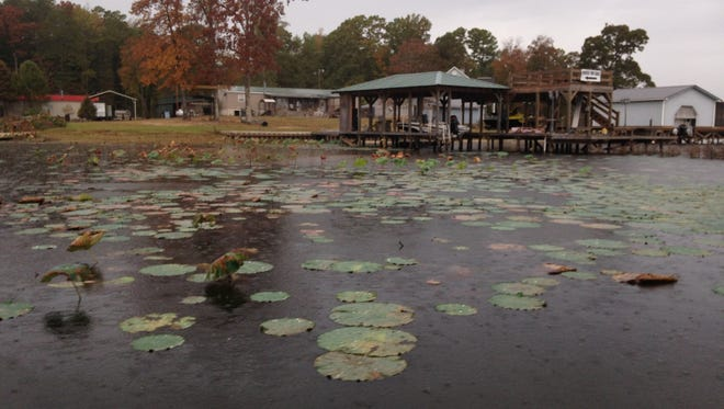 The LDWF will conduct a hearing Tuesday on the issues surrounding Caney Creek Reservoir.