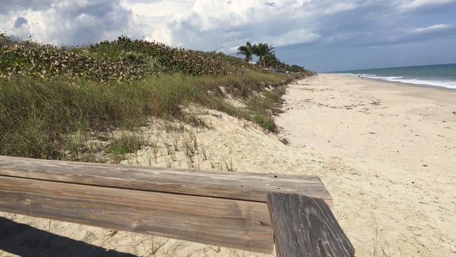 This dune, shown from Indian River County's Tracking Station Park, is part of a 5.4-acre parcel the Indian River Shores Town Council has voted to sell at auction April 8, 2017.