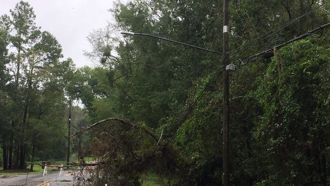 A down tree at Centerville Roadand McLaughlin Drive knocked out power to parts of Killearn for six and a half hours Monday.