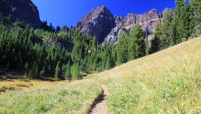 Upper Canyon Creek Meadows features views of Three Fingered Jack.