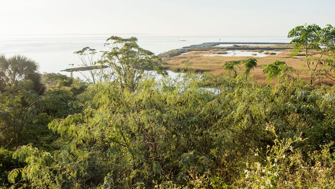 A view of Pensacola Bay from the hill above Bruce Beach in Pensacola on Tuesday, November 7, 2017.  A fish hatchery is proposed to be built on the Bruce Beach property.