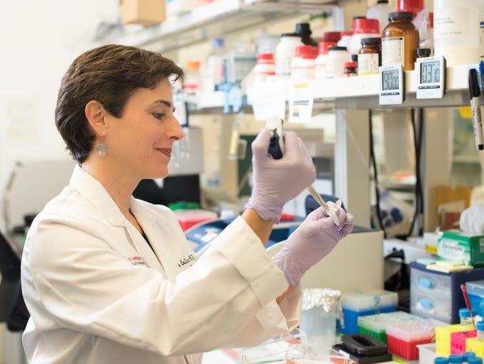 Dr. Amelia Gallitano of the University of Arizona College