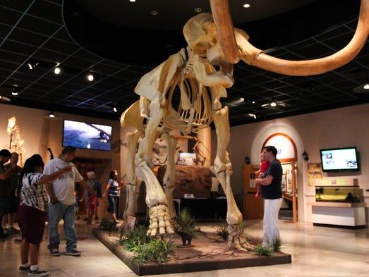 Natural History Museum Phoenix Az