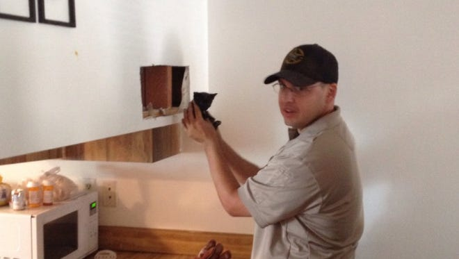 An Animal Services officer rescues a 4-week-old kitten that was stuck inside the wall of a home in west Cocoa.