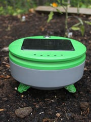 """The Tertill is billed as the """"first weeding robot available to home gardeners."""""""