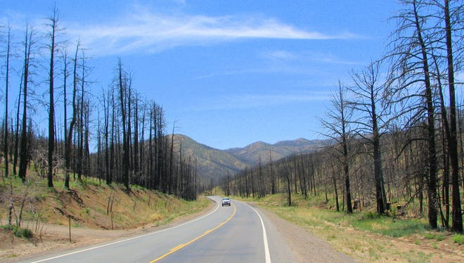 Charred trees from the Little Bear Fire in 2012 still stand along New Mexico Highway 48 on the way to Ruidoso. Every volunteer fire department in the county worked on portions of the fire, as well as municipal, U.S. Forest Service and Mescalero fire personnel.