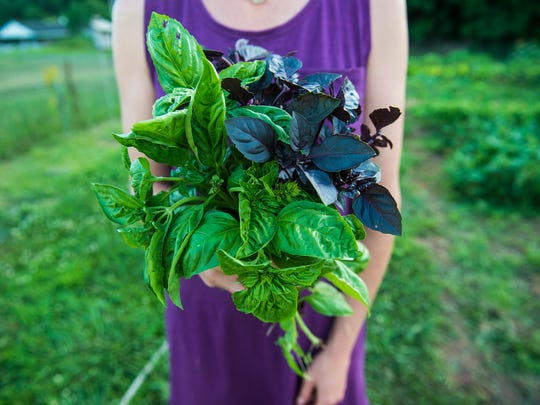 Kim Davidson, director of the Center for Public Service at Gettysburg College, holds some of the bounty from the garden on July 11, 2016.