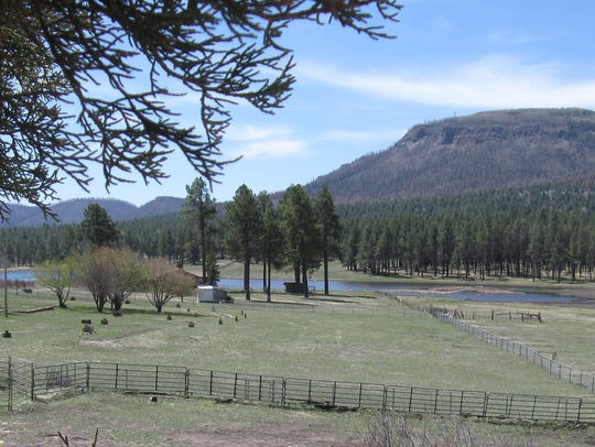 The little hamlet of Alpine survived the 2011 Wallow