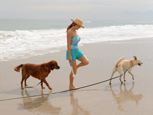 Weather at Canova Beach Dog Park
