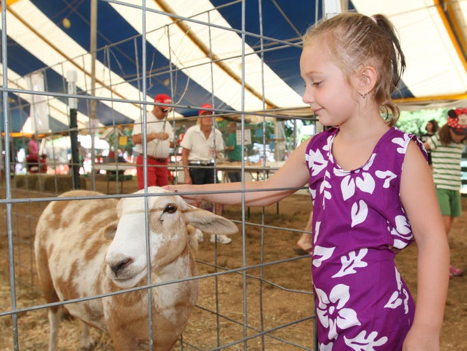 Kayla Anderson, 4, South River, pets a  Katahden sheep at the 4-H tent during the final day of the Middlesex County Fair, held at the Middlesex County Fairgrounds  in East Brunswick. Sunday August 10, 2014, East Brunswick,  NJ.    Photo by Robert Ward
