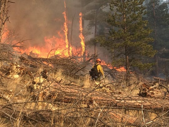 A prescribed burn is conducted in the Grizzly Gulch area of the Helena National Forest.