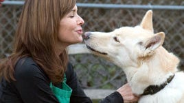 Williamson County Animal Shelter seeks families to foster dogs April 1-9.