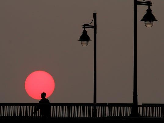 Sundower.jpg