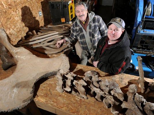 Mastodon Bones-Michigan (3)