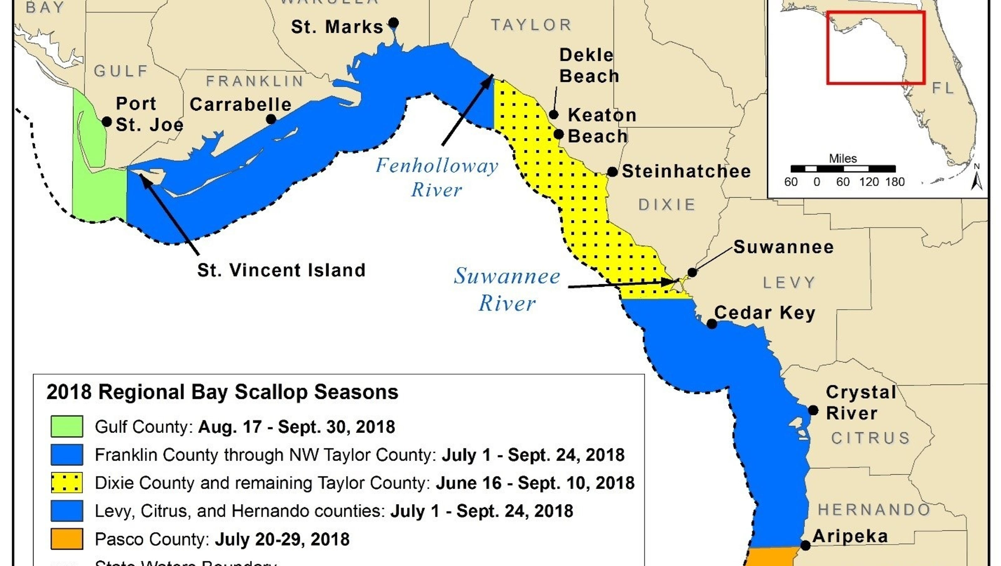 Map Of Florida Bays.Scallop Harvesting Dates Locations And Rules To Follow