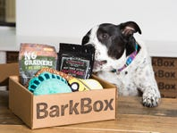 50% Off Your First BarkBox