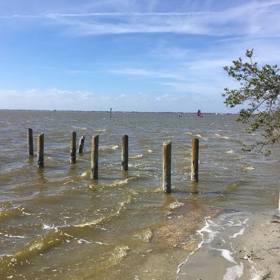 Group to score the Indian River Lagoon's health