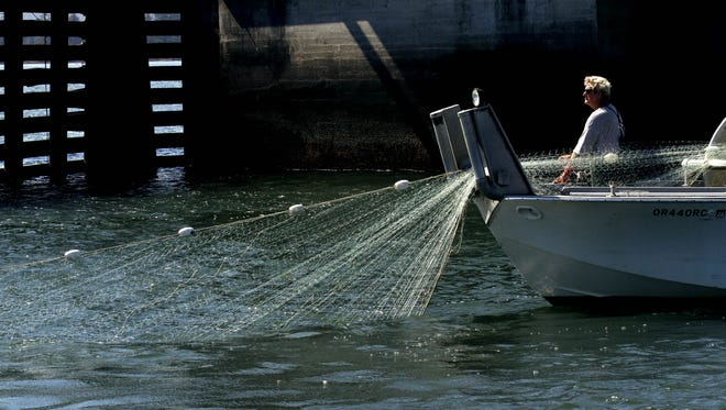 In this Sept. 7, 2012, file photo, a fisherman lays out his gillnet in Young's Bay off the Columbia River in Astoria.
