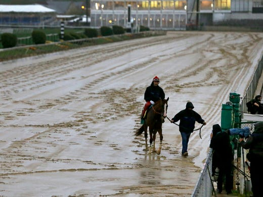 California Chrome Arrives To Resume Triple Crown Quest