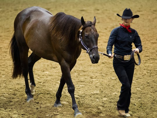 Contestants show their horses at the LSU AgCenter State Horse Show at the Lamar Dixon Expo Center on July 12, 2016.