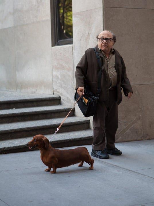 DFP wiener dog movie