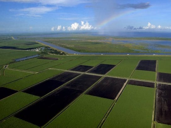A bill to curb Lake Okeechobee discharges is expected
