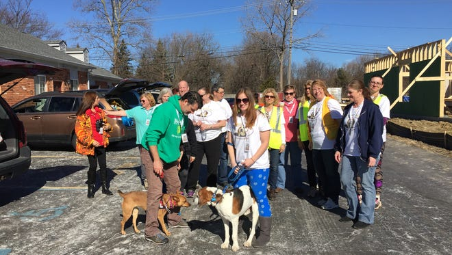 Cynthia Booth, center, with her foster dog Klaus, and several others awaited signs of Booth's missing dog, McKenzie, from drones flying overhead. They gathered in Troy on Feb. 19, 2017.