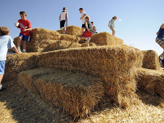 Hay mountain was a big hit. Kelsay Farms in Whiteland