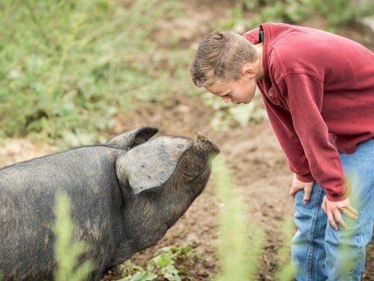 Gabriel Dykema of Dominion Valley Farm checks out one