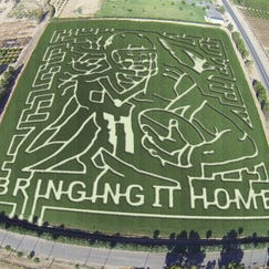 An aerial view of the Schnepf Farms celebrity corn maze, which this year features Cardinals star Larry Fitzgerald.
