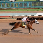 Constantly changing qualifiers lead to captivating All American Derby