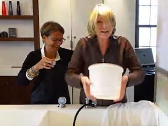 Martha Stewart ice bucket