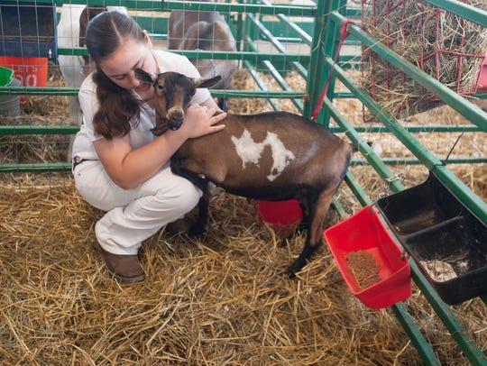 Alexandrea Stewart checks over her goats as she gets