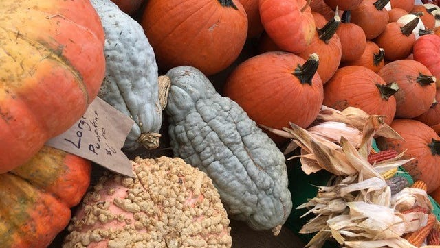 Pumpkins in all shapes and sizes are colorful and abundant at the farmers market.