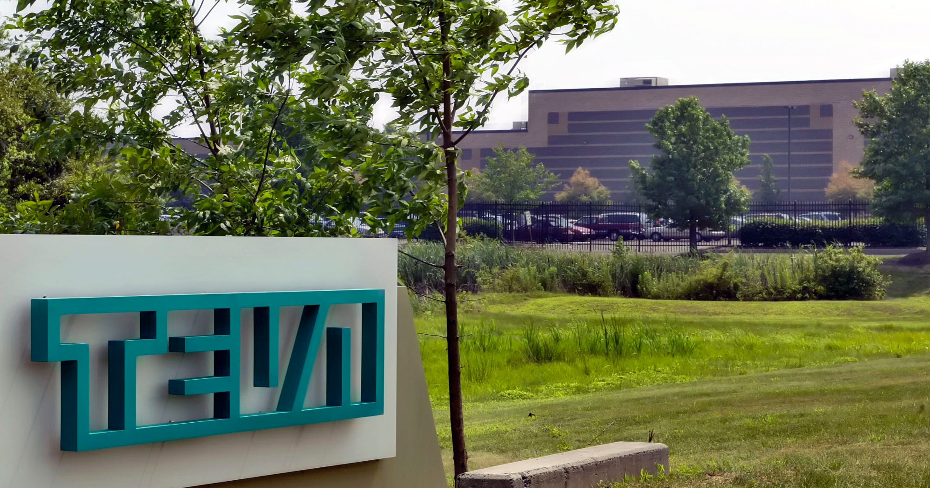 teva pharmaceuticals usa stock