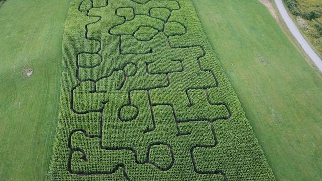An aerial image of last years maze.