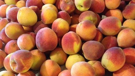 Peaches harvested from a four-year old Elberta peach tree in Las Cruces.