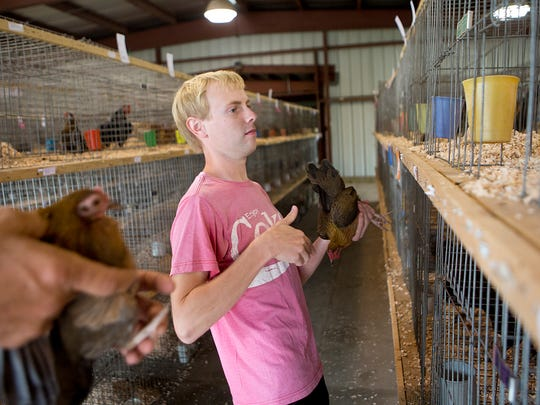 Assistant superintendent of poultry Josh Robus of Pittsville helps Dale Garfield of Marshfield, left, place his poultry in cages at the Marshfield Fairgrounds on Tuesday.