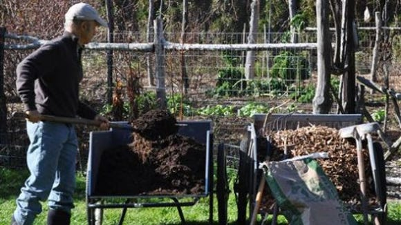 When and how to add organic fertilizers to your soil